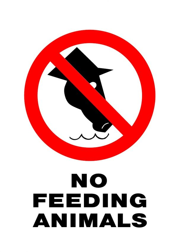 PROHIBITED NO FEEDING ANIMALS